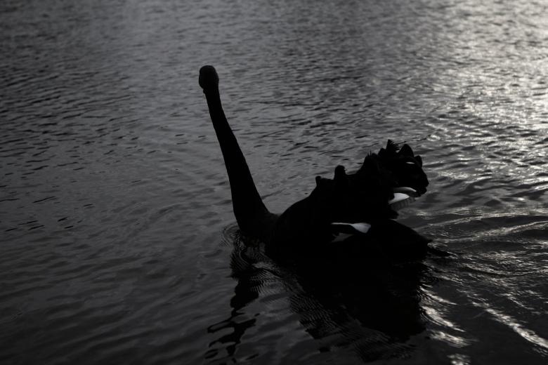 Sinking Legs